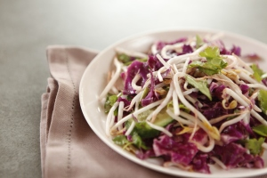 red cabbage and sprout salad