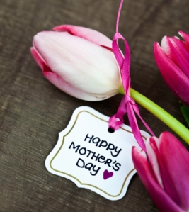 Tulip-With-Mothers-Day-Card